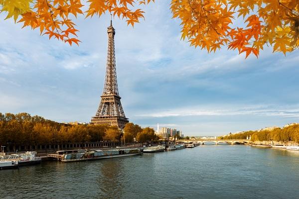 Greffe de cheveux Paris